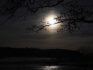What to do about RO2 exams and stress - photo of moonllght