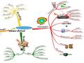 Memory mindmaps - image of mindmap