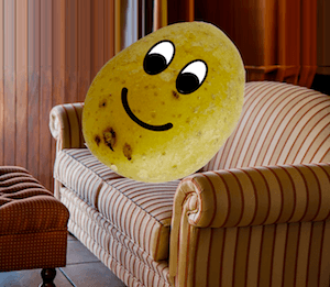 Are you sitting comfortably? Photo of couch potato