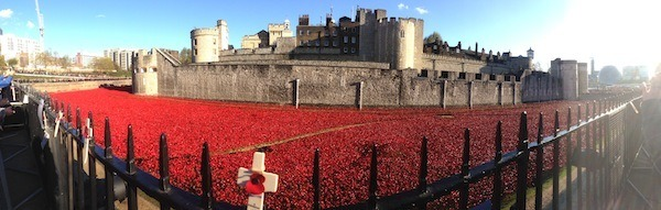 Why I'll remember the poppies - photo of poppies at the Tower Of London