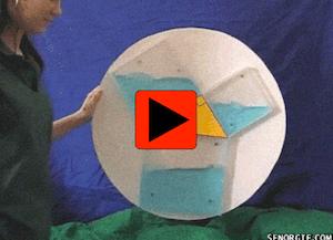 Maths can be fun - videos of maths principles