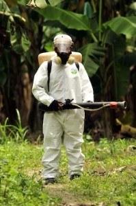 Decisions. Photo of pest exterminator