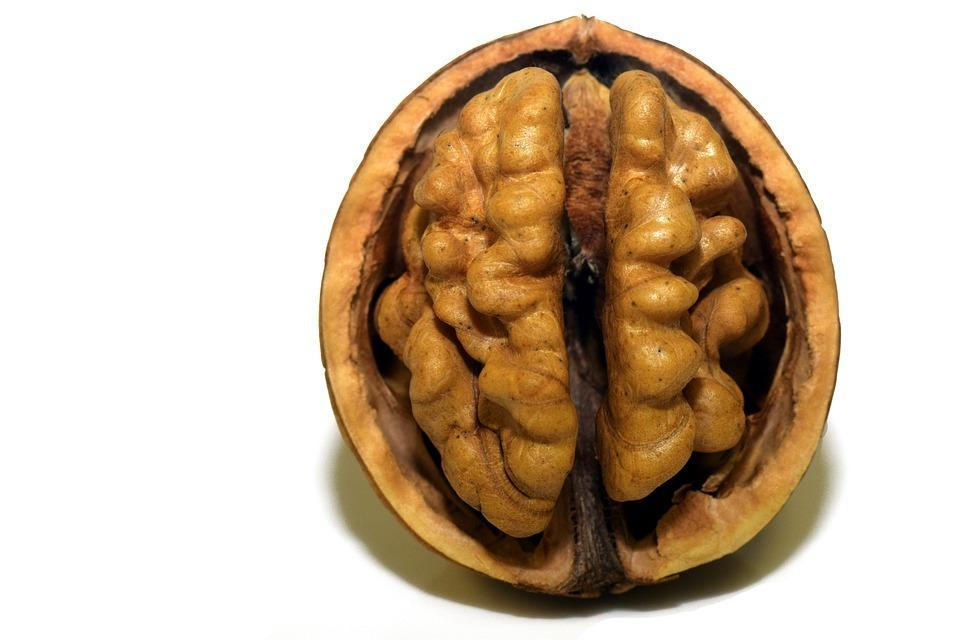 How to know if your brain is healthy